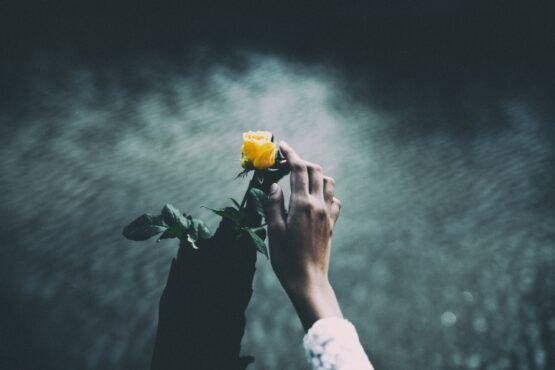 Wat als de liefde niet genoeg is?
