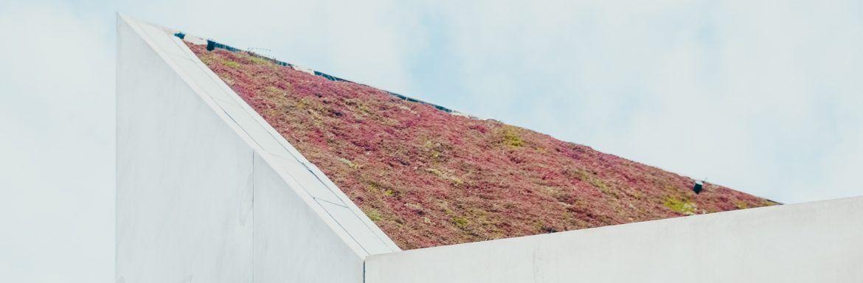 In dit duurzame huis wil je wonen