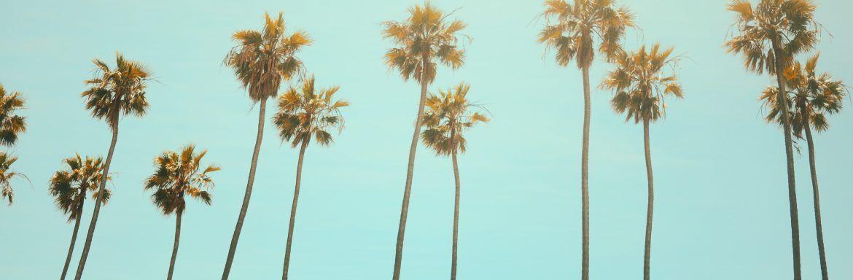 Echt ontspannen aan je vakantie beginnen? Met deze zes tips gaat dat je lukken