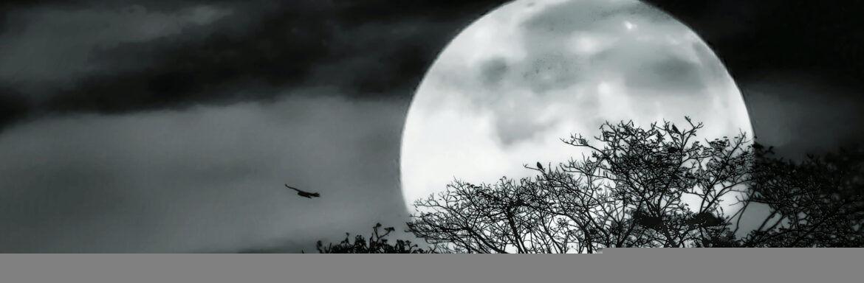 Totale super maansverduistering op 21 januari