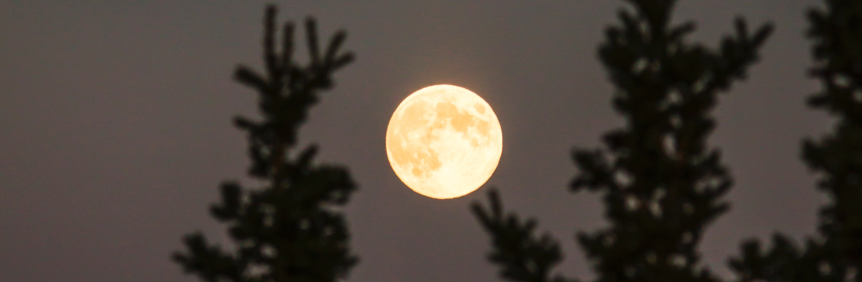 De volle super maan in Maagd, kijk je angsten aan