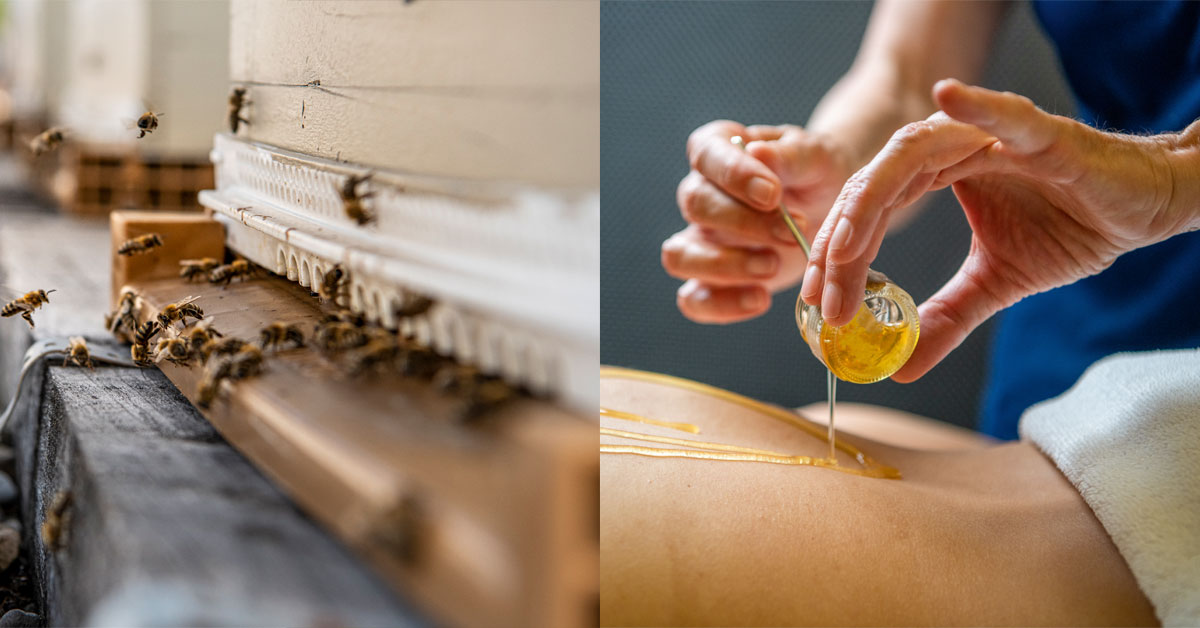 Schweizerhof bijen