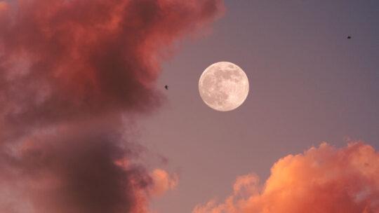 Wat leer je tijdens de Moon Classes?
