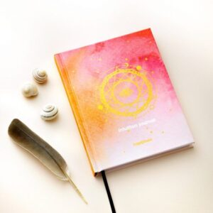 Intuition notebook